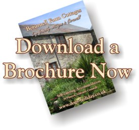 download a brochure